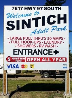 sintich-(5)